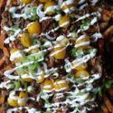 Pork Loaded Fries