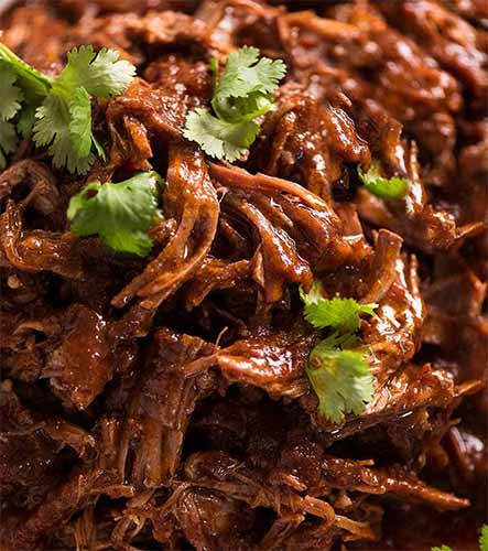 Pulled Beef Combo